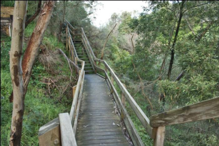 walks at sweetwater creek