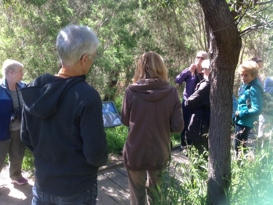 Bird Walks held regularly with expert leaders